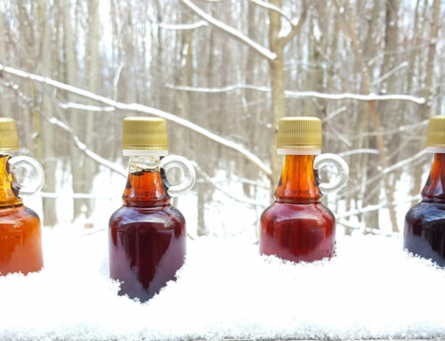New Maple Syrup Grading System