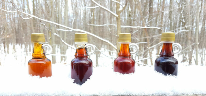 Small Maple Syrup bottles featuring different grades of syrup/