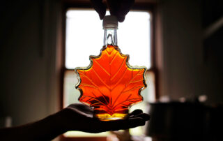 backlit bottle of maple syrup being held up