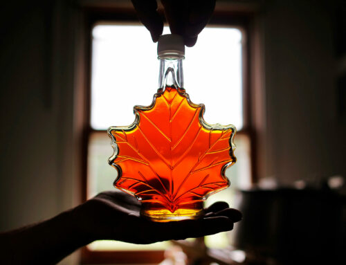 Maple Syrup Myths or Facts